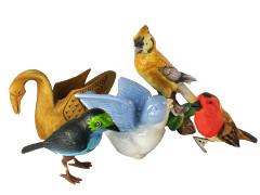 Vogel decoraties