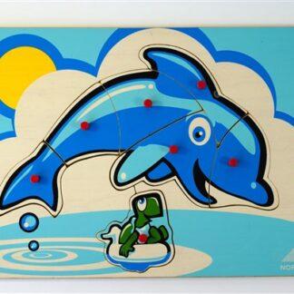 Dolfijn + schildpad